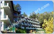 Kausani Hotel Packages