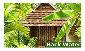 Alleppey Backwater Resorts