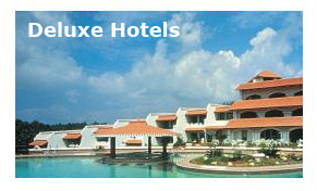 Deluxe Hotels in Kottayam