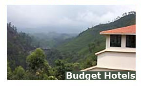 Budget Hotels in Munnar