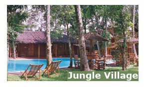 Jungle Village Resort