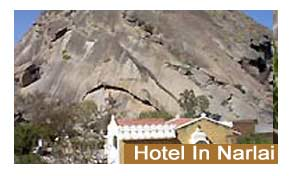 Hotels in Narlai